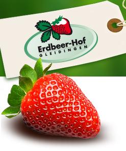 Erdbeer-Hof Gleidingen